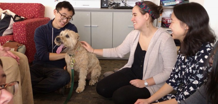 From left, Hans Gao '14 MD'18; Fletcher, a soft-coated wheaten terrier; Aviya Lanis MD'18, one of the leaders of the Health and Wellness Initiative; and Alice Tin, MPH MD'16, of One Health. Photo by David DelPoio