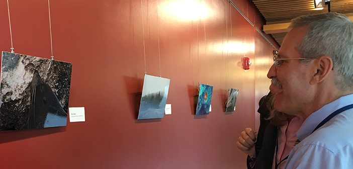 """Professor of Medicine Leonard Mermel talks about some of the pieces featured in """"World View,"""" an exhibition of his photography on display at Alpert Medical School. Photo by Jumoke Dumont"""