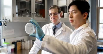 Eleftherios Mylonakis in the lab with Kiho Lee, who is holding a petri dish containing nematodes used to test potential antibiotics. Photo courtesy of Lifespan