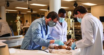Student dissecting a cadaver